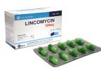 Линкомицин капсулы