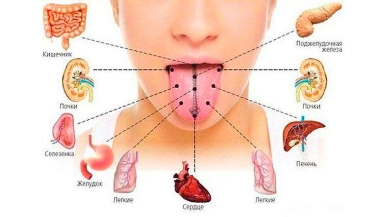 Как лечить язву желудка в домашних условиях прополисом