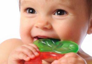 прорезыватель зубов