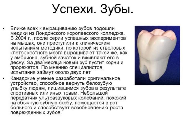 Методы выращивания зубов