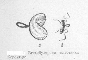 Устройство Кербитца