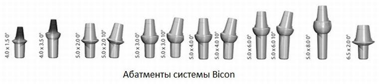 Bicon протезирование