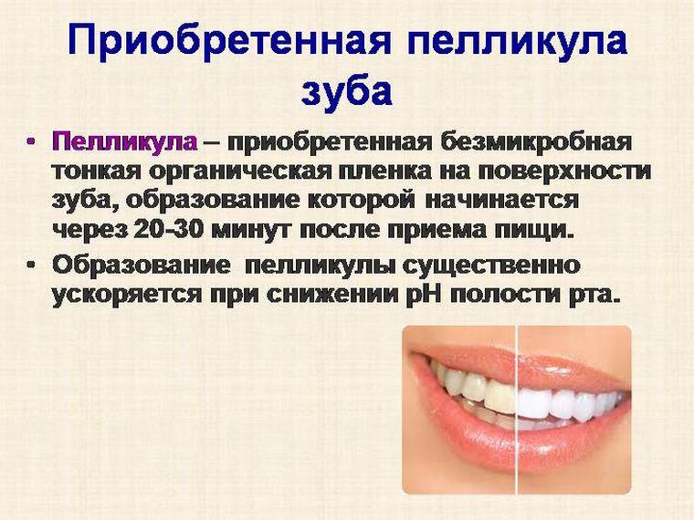 Пелликула зуба
