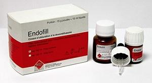 Эндофил