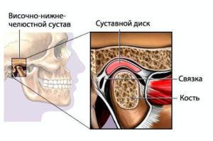Строение височно-нижечелюстного сустава