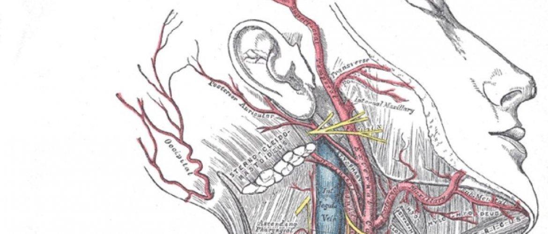 Болезненность в области нерва