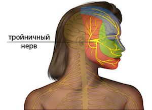 где находится тройничный нерв