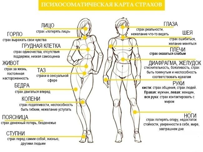 Твое тело говорит Люби себя