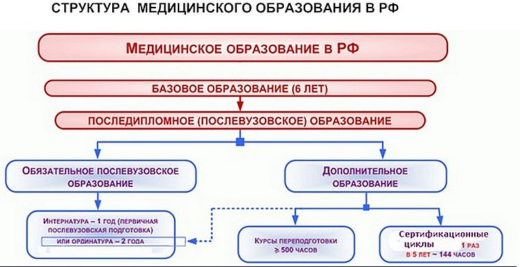 этапы обучения врача